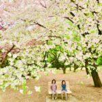 【子連れ】お花見にも!新宿御苑周辺のカフェ・ピクニックフードまとめ♫【新宿門編】