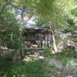 紅葉の季節に☆ディープな鎌倉を子どもと満喫!【ゆったり仏像と歴史めぐり@覚園寺】